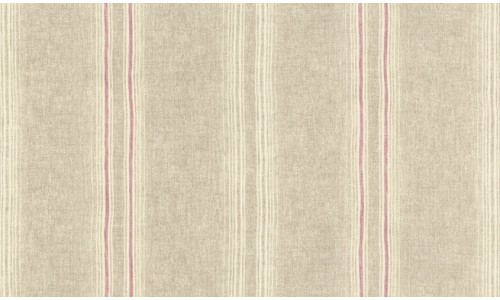 Library Stripe 804
