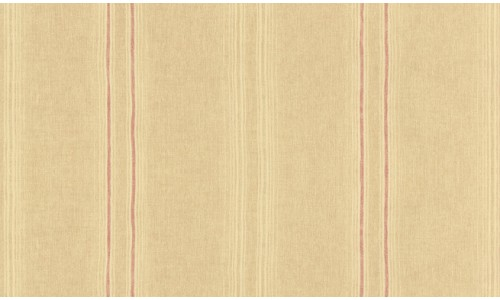 Library Stripe 805