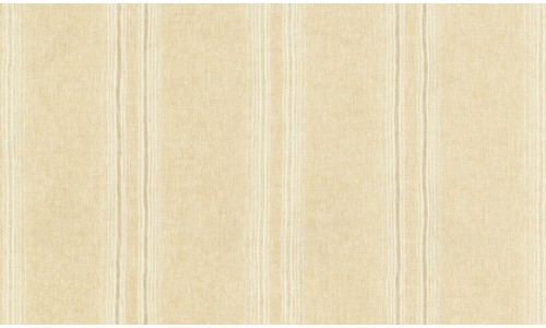 Library Stripe 806